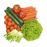 Große Gemüse-Kiste