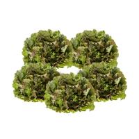 5x Bunter Salat