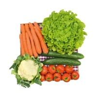 Kleine Gemüse-Kiste