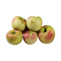 Saft- und Back-Äpfel mit kleinen Makeln