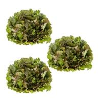 3x Bunter Salat