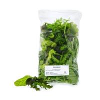 Schnitt-Salat