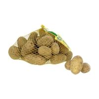 Kartoffeln: Linda