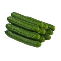 10x Salatgurke
