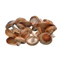 frische-shiitake-pilze-kaufen